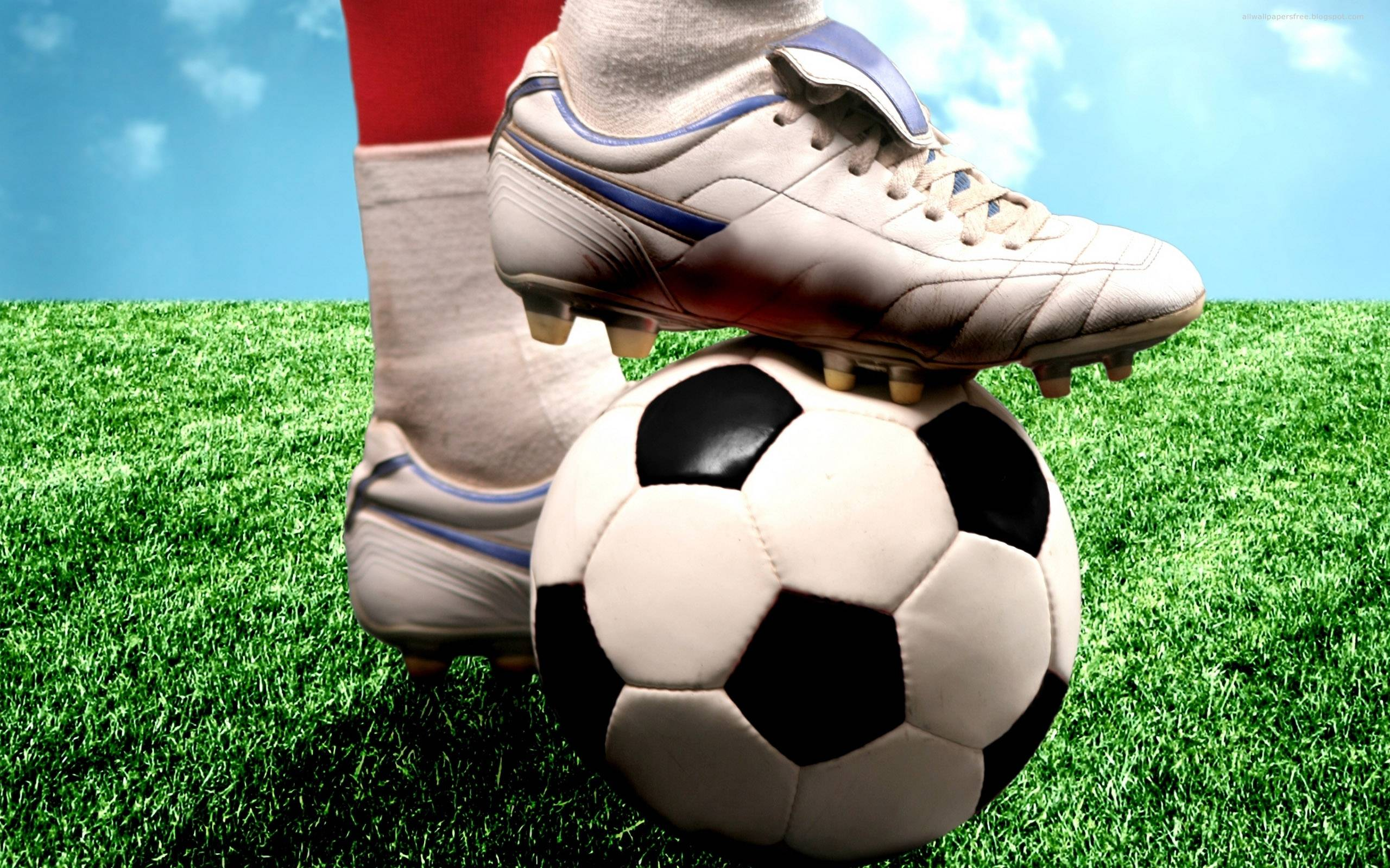 Online Sports Activities Betting Within The Philippines